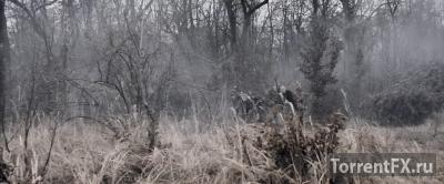 Меч мести (2015) WEB-DL 720p