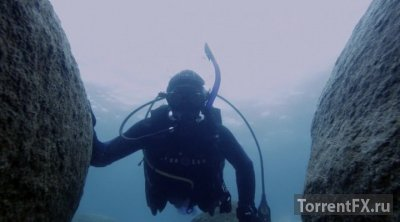 Акулье озеро (2015) WEB-DLRip | L2