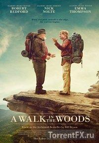 Прогулка по лесам (2015) HDRip