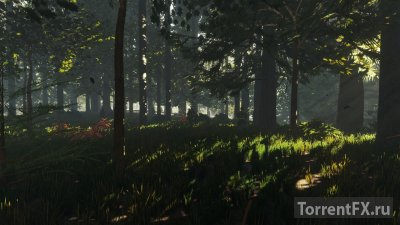 The Forest [v 0.37] (2015) SteamRip от R.G. Games