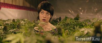 Плохие семена (2016) DVDRip